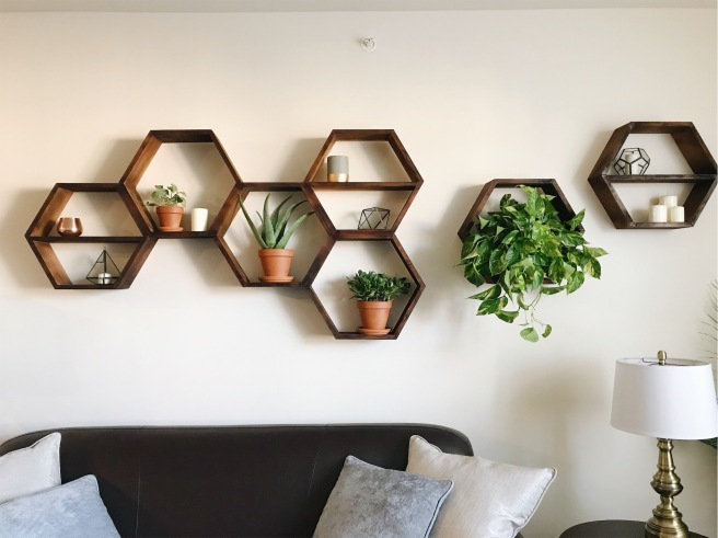 Hexagon Shelves (Use this one)