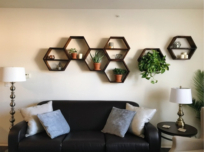 HexagonShelvesandCouch